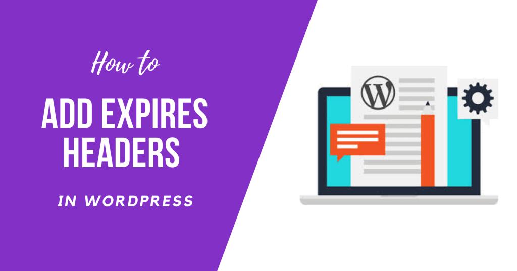 Add Expires Headers WordPress on Apache or Nginx