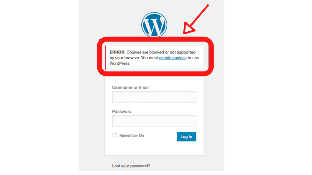 Cookies are blocked or not supported by your browser and you must enable cookies to use WordPress